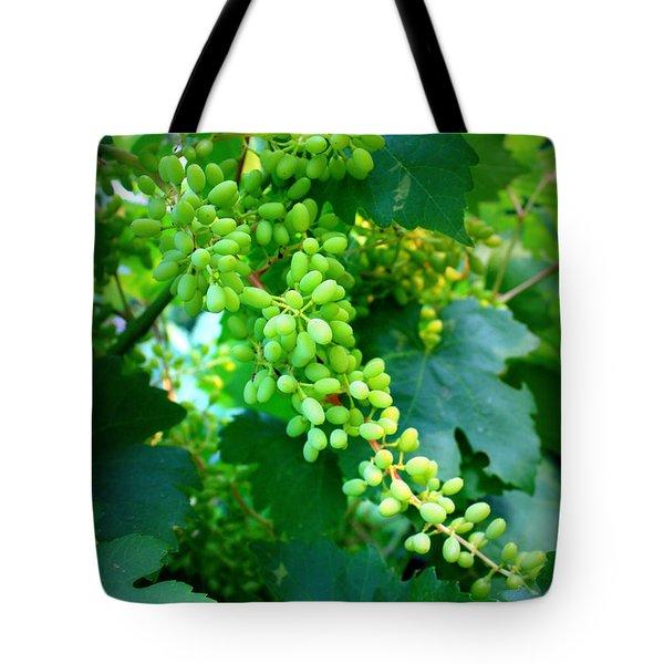 Backyard Garden Series - Young Grapes Tote Bag by Carol Groenen