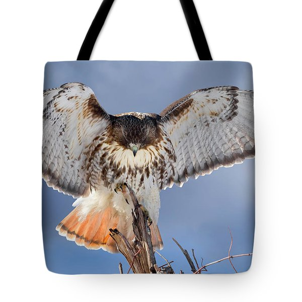 Balance Tote Bag by Bill Wakeley