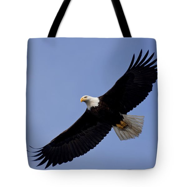 Bald Eagle in flight Tote Bag by John Hyde - Printscapes