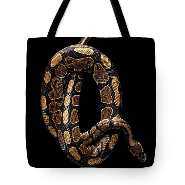 Ball Or Royal Python Snake On Isolated Black Background Tote Bag by Sergey Taran