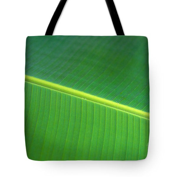 Banana Leaf Tote Bag by Dana Edmunds - Printscapes
