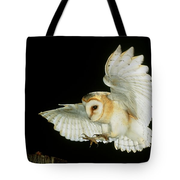 Barn Owl Tote Bag by Andy Harmer and SPL and Photo Researchers