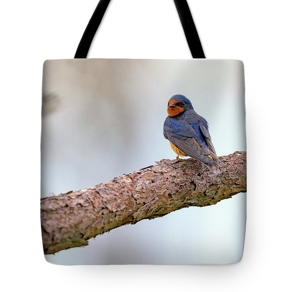 Barn Swallow On Assateague Island Tote Bag by Rick Berk