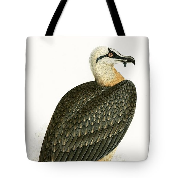 Bearded Vulture Tote Bag by English School