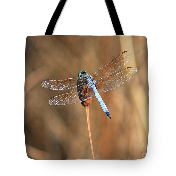 Beautiful Broken Wing Tote Bag by Carol Groenen