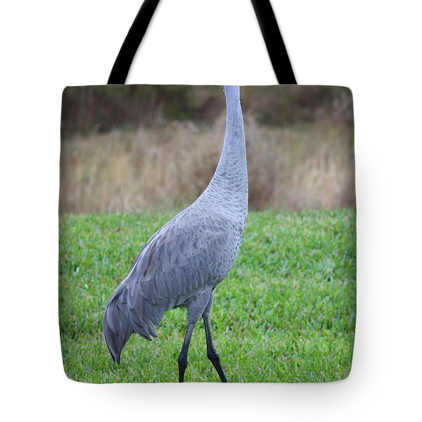 Beautiful Sandhill Crane Tote Bag by Carol Groenen