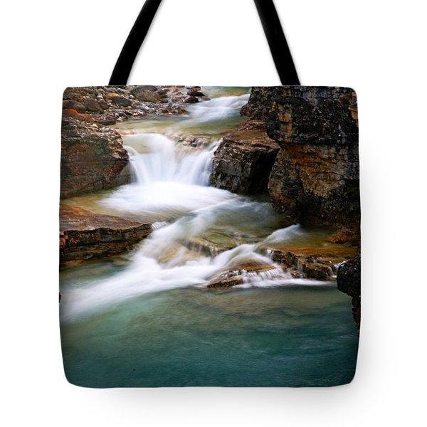 Beauty Creek Cascades Tote Bag by Larry Ricker