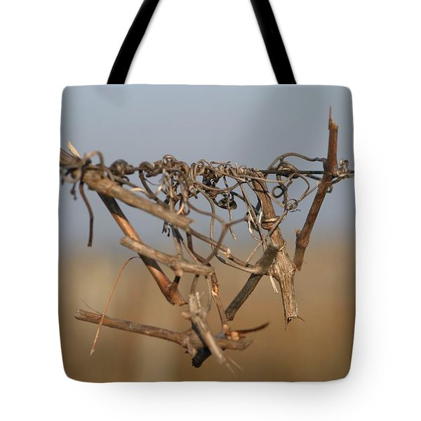 Beauty is Everywhere Tote Bag by Dagmar Ceki