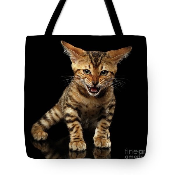 Bengal Kitty Stands And Hissing On Black Tote Bag by Sergey Taran