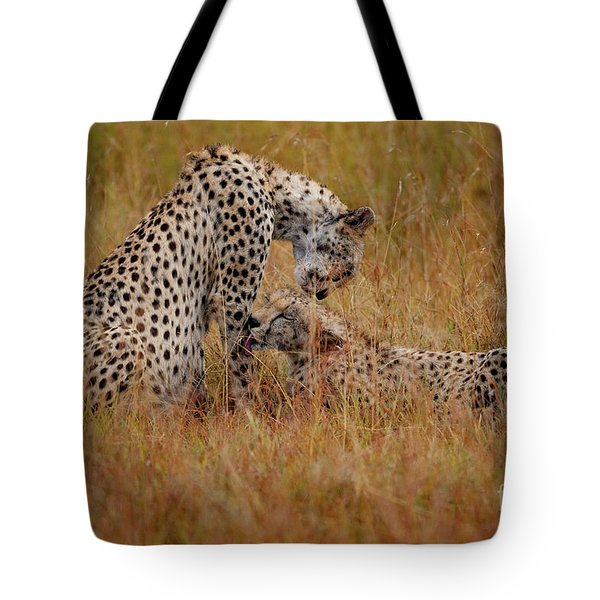 Best Of Friends Tote Bag by Stephen Smith