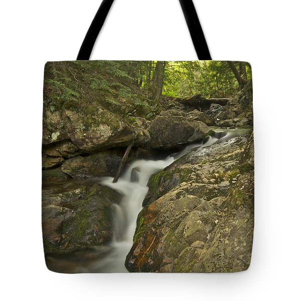 Big Pup Falls 4 Tote Bag by Michael Peychich