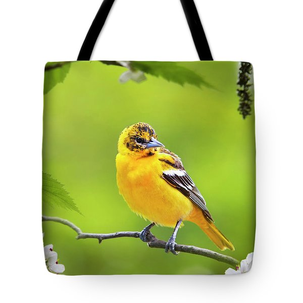 Bird And Blooms - Baltimore Oriole Tote Bag by Christina Rollo