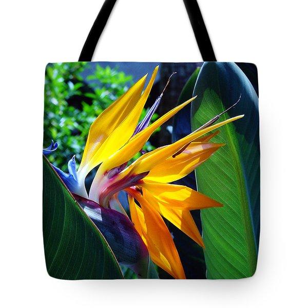 Bird Of Paradise Tote Bag by Susanne Van Hulst