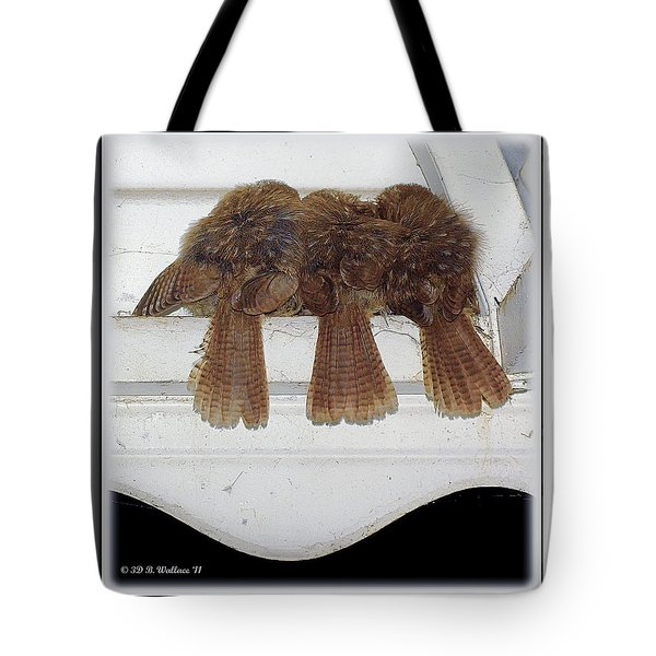 Birds Of A Feather Tote Bag by Brian Wallace