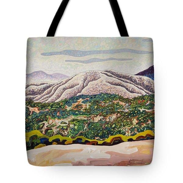 Birdseye Landscape #4 Tote Bag by Dale Beckman