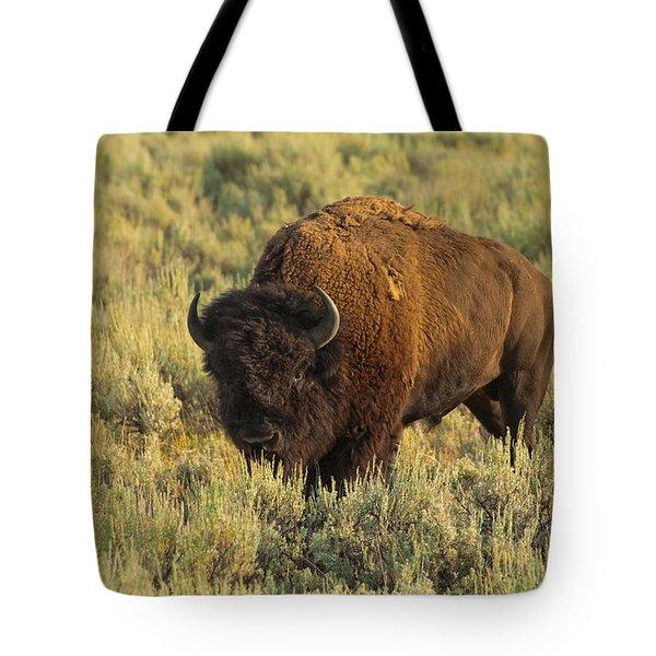 Bison Tote Bag by Sebastian Musial