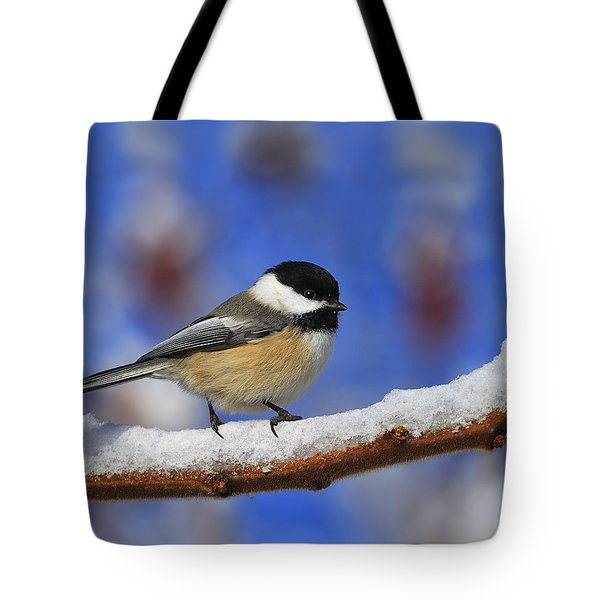Black-capped Chickadee In Sumac Tote Bag by Tony Beck