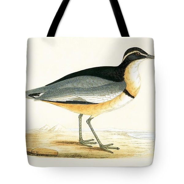 Black Headed Plover Tote Bag by English School