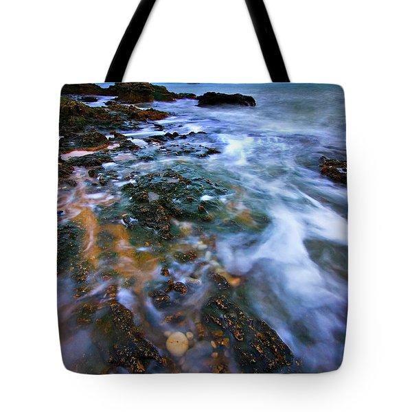 Black Point Light Tote Bag by Meirion Matthias