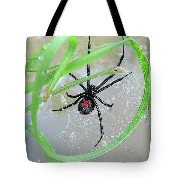 Black Widow Wheel Tote Bag by Al Powell Photography USA