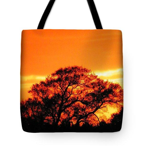 Blazing Oak Tree Tote Bag by Karen Wiles