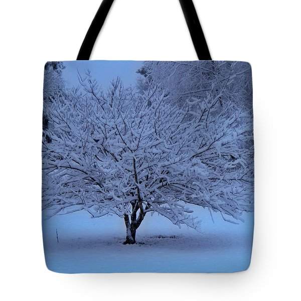 Blue Christmas Tote Bag by Betty Northcutt