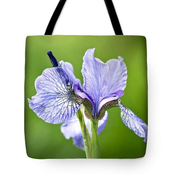 Blue Iris Germanica Tote Bag by Frank Tschakert