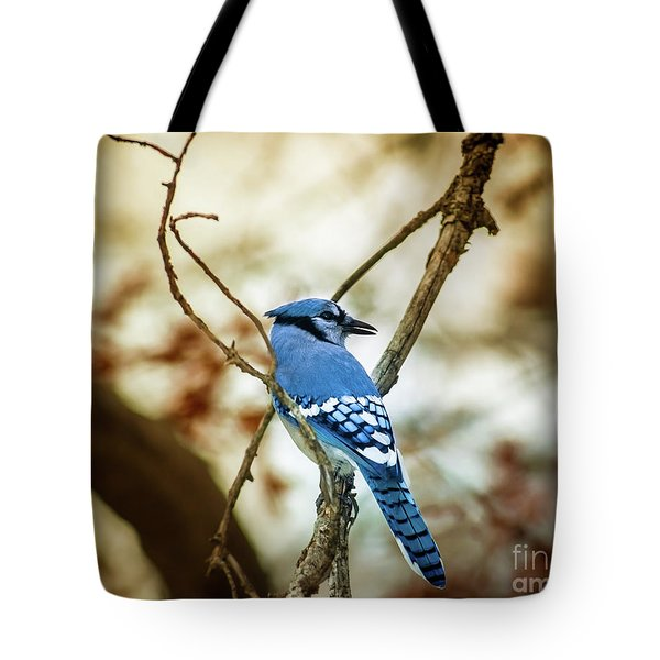 Blue Jay Tote Bag by Robert Frederick