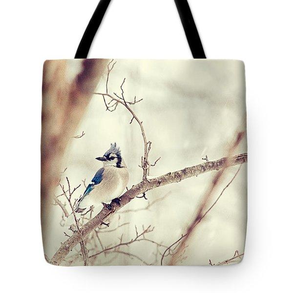 Blue Jay Winter Tote Bag by Karol Livote