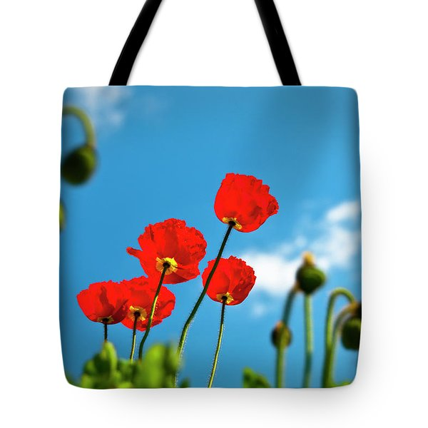 Blue Sky And Poppies Tote Bag by Tamyra Ayles