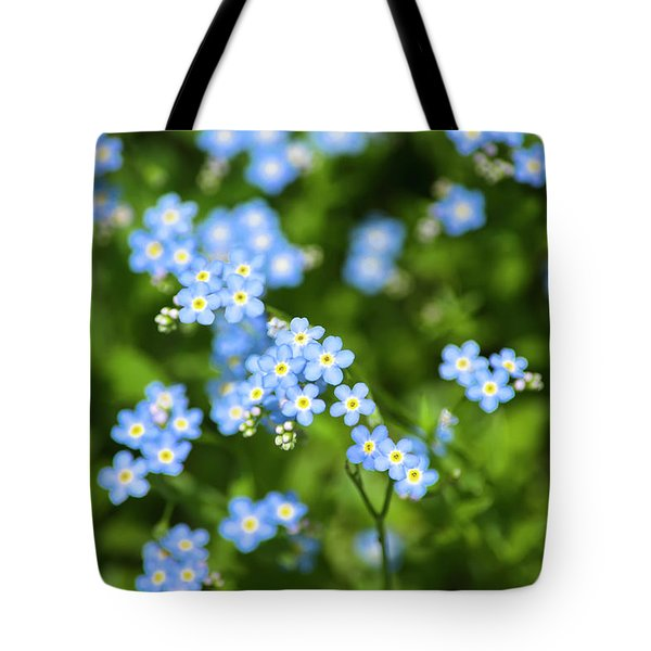 Blue Wildflower Art Forget Me Nots Photograph By