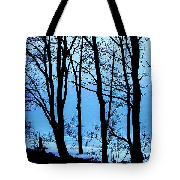 Blue Woods Tote Bag by Karol Livote