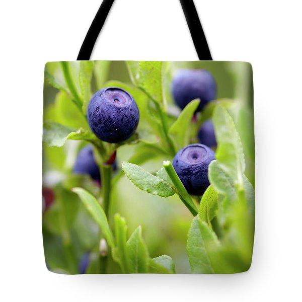 Blueberry Shrubs Tote Bag by Michal Boubin