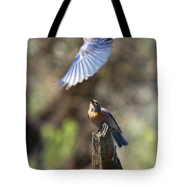 Bluebird Buzz Tote Bag by Mike Dawson