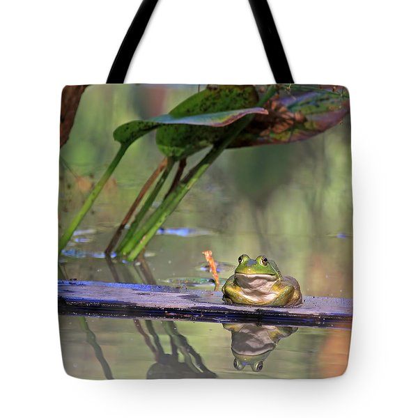 Boardwalk Tote Bag by Donna Kennedy
