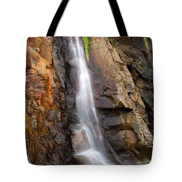 Boiler Bay Cascade Tote Bag by Mike  Dawson