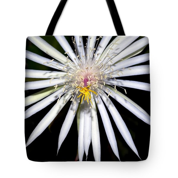 Bold Cactus Flower Tote Bag by Kelley King