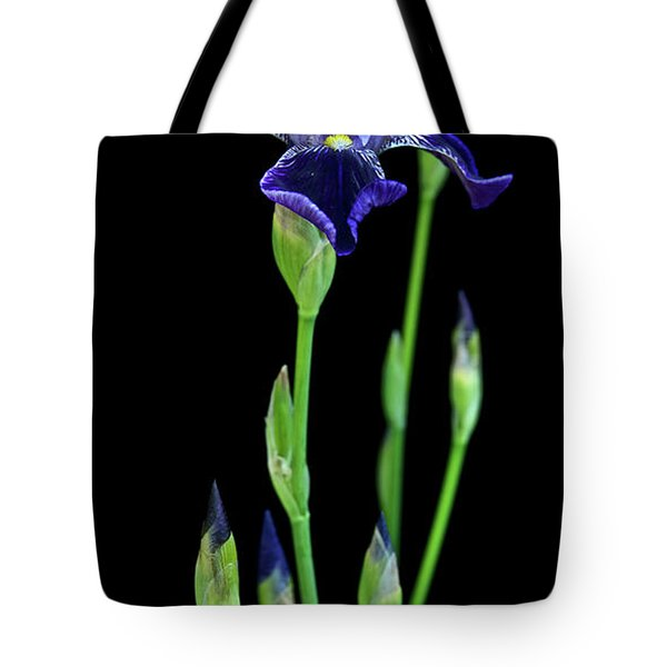 Boldness Tote Bag by Michael Peychich