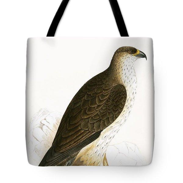 Bonelli's Eagle Tote Bag by English School