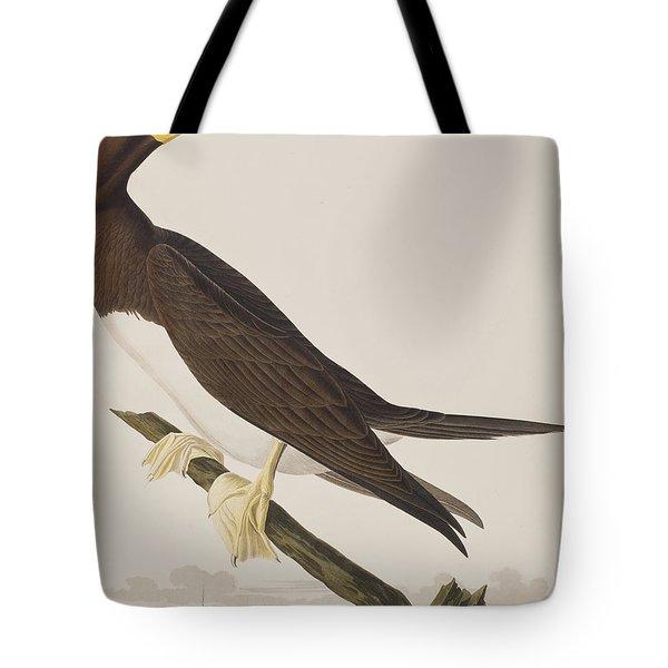 Booby Gannet   Tote Bag by John James Audubon