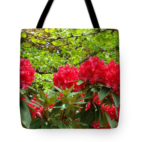 Botanical Garden Art Prints Red Rhodies Trees Baslee Troutman Tote Bag by Baslee Troutman