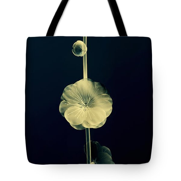 Botanical Study 6 Tote Bag by Brian Drake - Printscapes