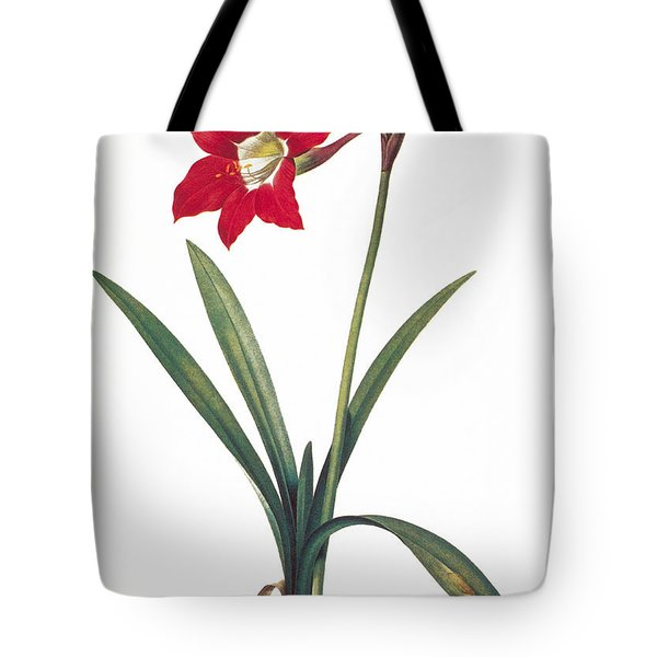 Botany: Lily Tote Bag by Granger