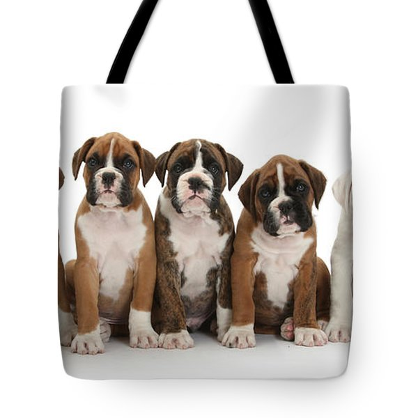 Boxer Puppies Tote Bag by Mark Taylor