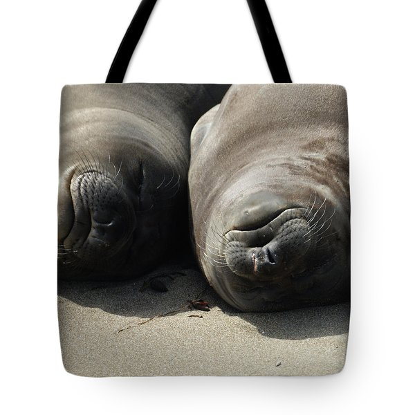 Break Time Tote Bag by Ernie Echols