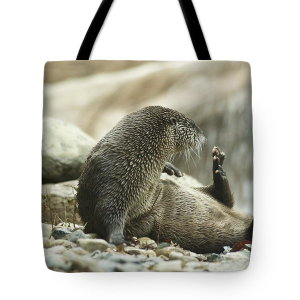 Break Time Tote Bag by Michael Peychich