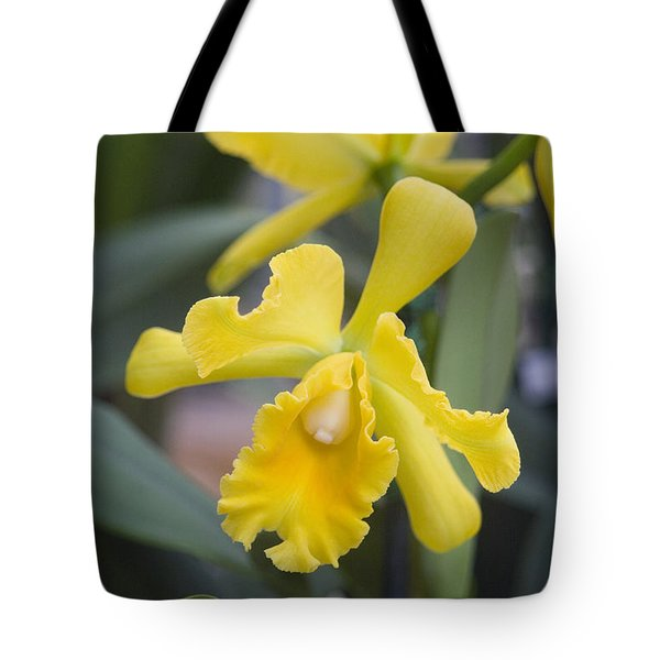 Bright Yellow Cattleya Orchid Tote Bag by Allan Seiden - Printscapes