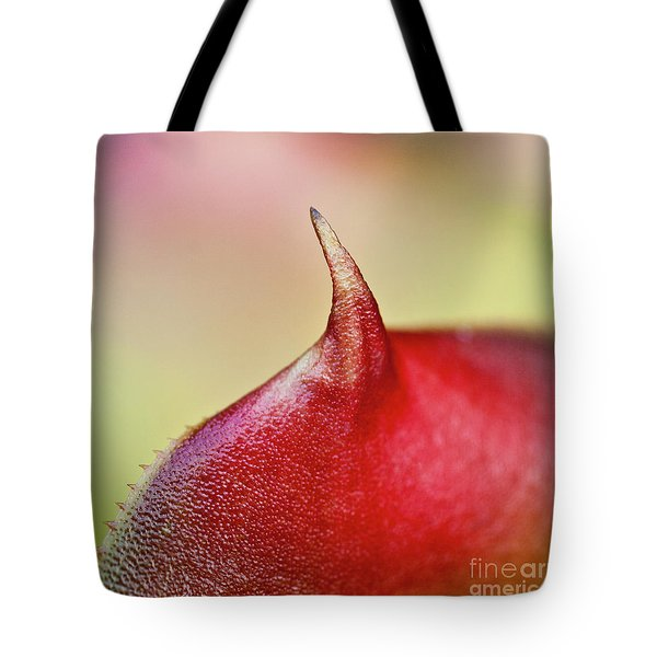 Bromeliad Tote Bag by Heiko Koehrer-Wagner