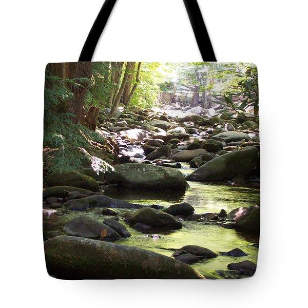 Brook Tote Bag by Denny Casto
