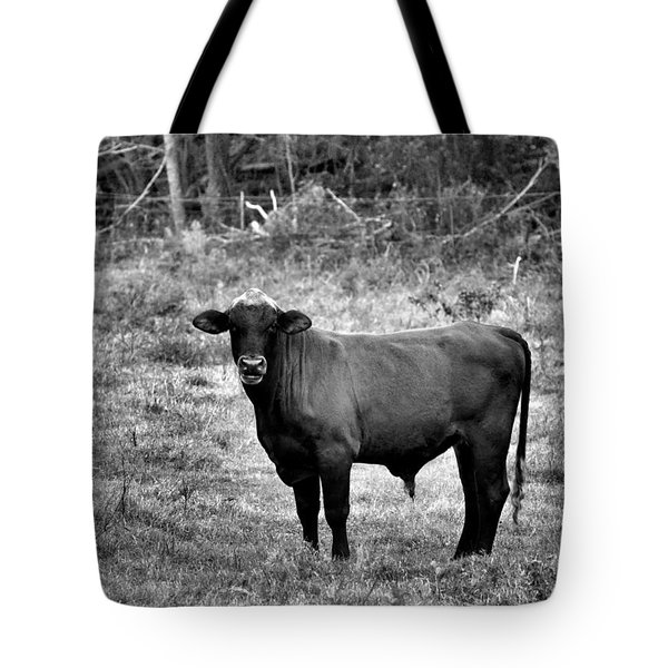Brutus2 Tote Bag by Jan Amiss Photography
